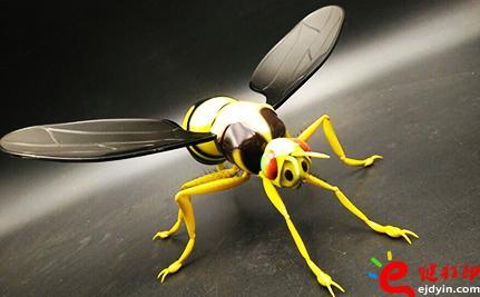 苍蝇.jpg